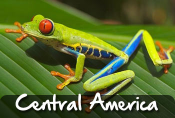 school tours to central america