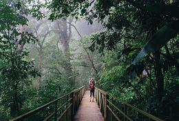 Cultural tour of Costa Rica