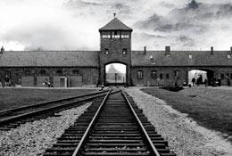 Krakow & Auschwitz History Trip  photograph