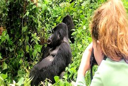 Uganda Wildlife Education Tour