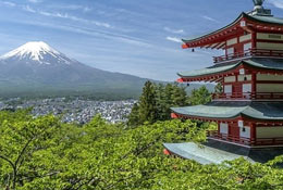 Educational trips to Japan with Equity