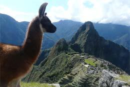Peru Explorer 12 days photograph