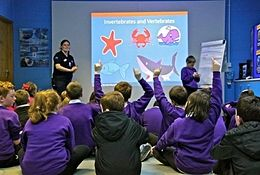 Deep Sea World Education school groups