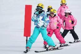 Camp Suisse Ski school groups