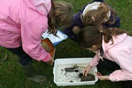 Conway Centres Beeston school groups