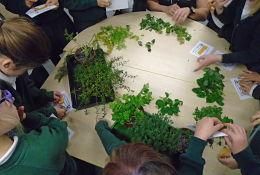 school trip at Earth Days - Biology Workshops