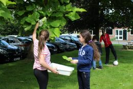 school trip at FSC Outreach: Trees and Plants
