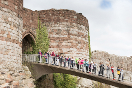 school trip at Beeston Castle and Woodland Park