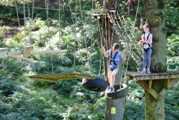 school trip at Peak  - Trentham Treetop Adventures