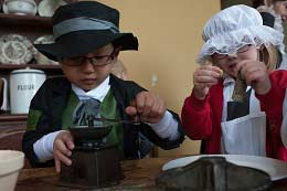 County Museum at Hartlebury Castle school groups
